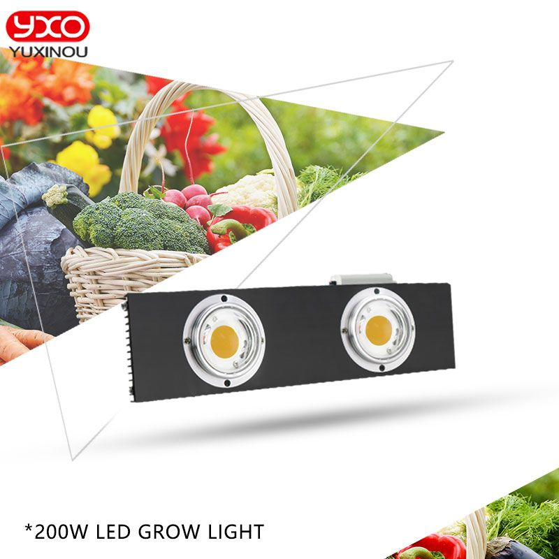 CREE CXB3590 200 W 36000LM 3500 K 5000 K Dimmbare COB LED Wachsen Licht Voll Spektrum Wachsenden Lampe Indoor-Anlage wachstum Panel Beleuchtung