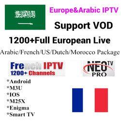 Neo TV 1 Année Abonnement Europe Français Italia 1300 Canaux Soutien Android TV Box Arabe IPTV M3u Top Box Qhdtv compte