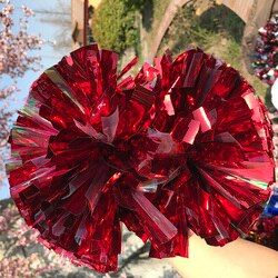 Cheer Dance Sport Supplies Competition Cheerleading Pom Poms Flower Ball Lighting Up Party Cheering Fancy Pom Poms 1PC