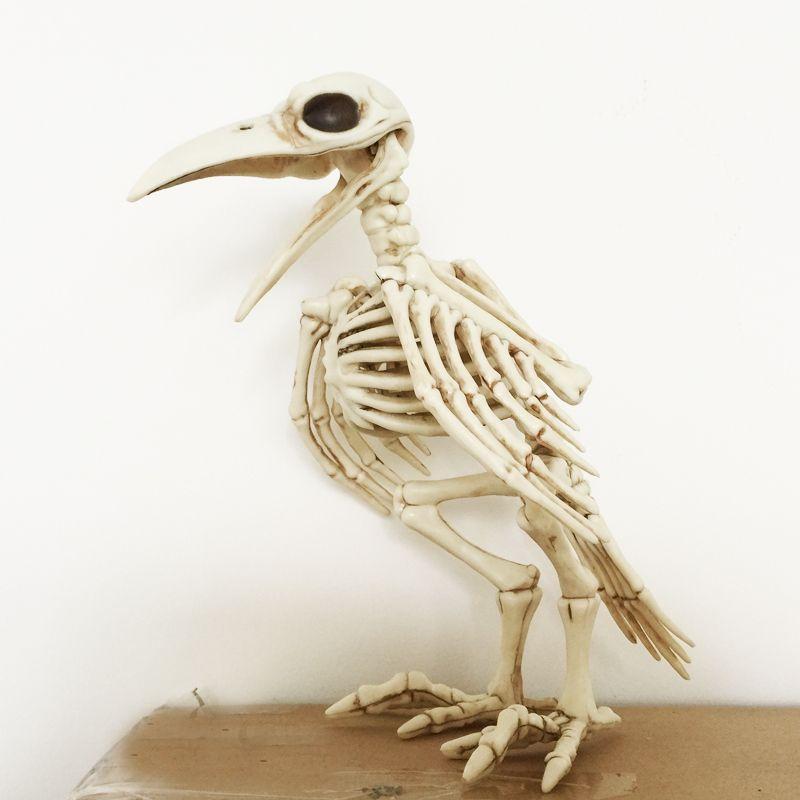 Squelette Raven100 % plastique animaux squelette os pour horreur Halloween décoration
