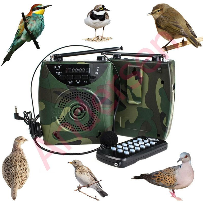 48 Вт более 800 Товары для птиц звук Беспроводной дистанционного птица абонент MP3-плееры цифровой Охотничьи приманки с гарнитурой