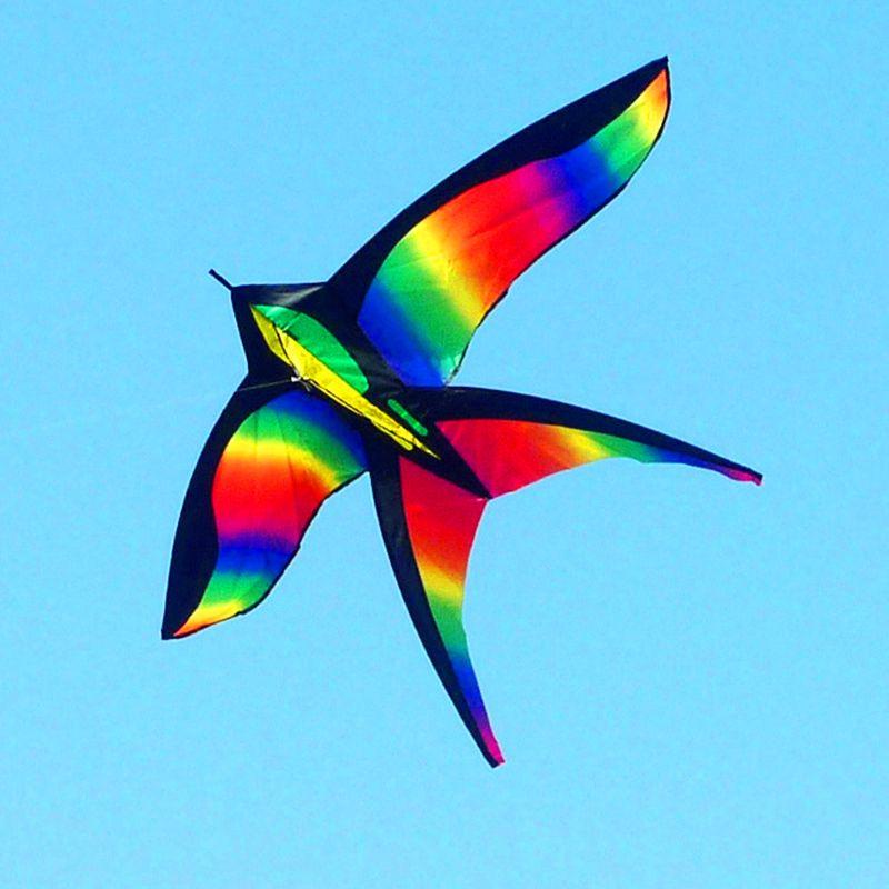 Livraison gratuite arc-en-ciel oiseau cerf-volant ligne volante ripstop nylon tissu en plein air jouets enfant cerf-volant en gros weifang cerf-volant usine pieuvre