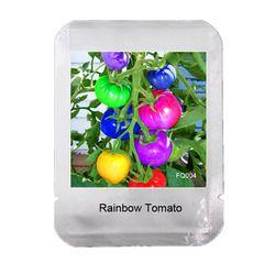 100 Graines/Pack très rare arc-en-tomate graines, fruits et légumes graines, organique plantes en pot pour la maison jardin NON-OGM, # FQ004