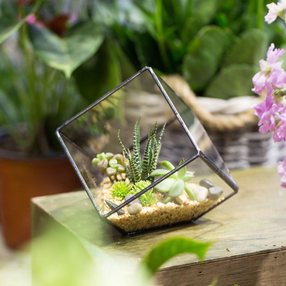 Fait main De Table Succulente Plante Micro Paysage Terrarium Bonsaï Polyèdre Verre Clair Géométrique Terrarium Boîte Pot de Balcon