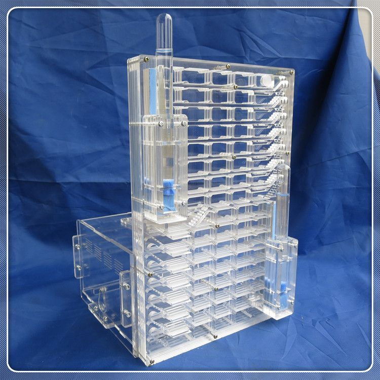 BIG VILLA moisture with feeding area ant nest ant farm acryl, insect ant nests villa pet advanced mania for house ants