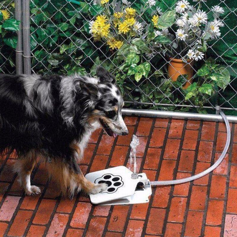 Im freien Hund Katze Pet Trinkwasser Brunnen Doggie Hund Sprinkler Ausbildung Geistiges Werkzeug Pet Wasser Trinken Maschine