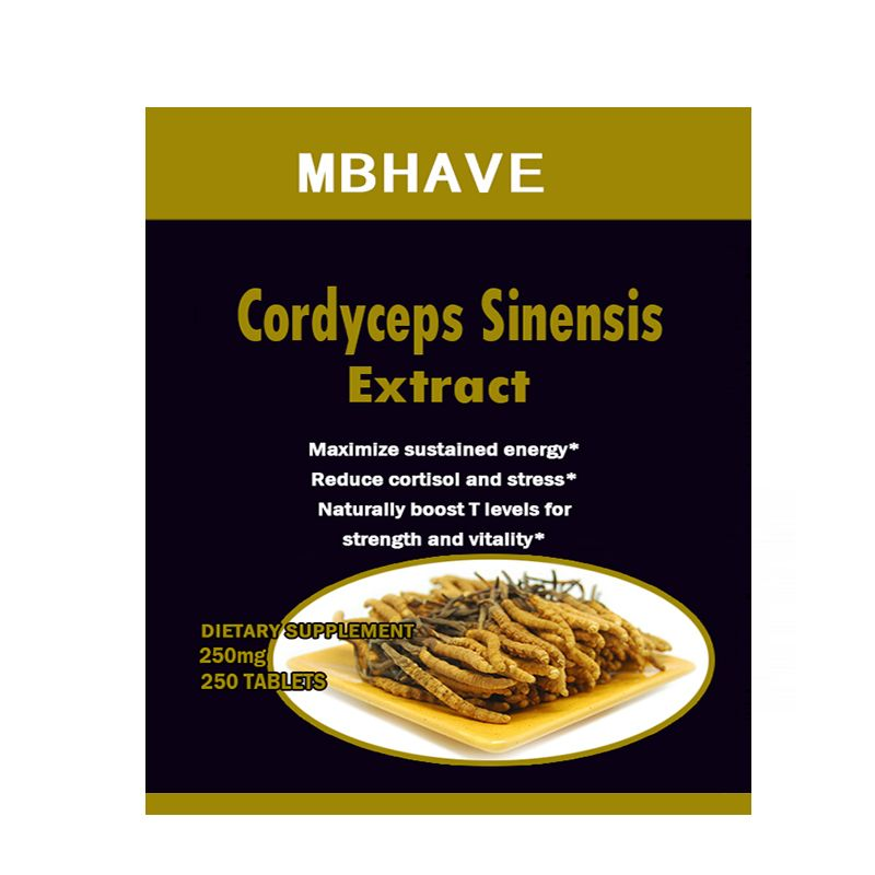 CS-4 250PCS  Cordyceps Sinensis extract   Mushroom Extract