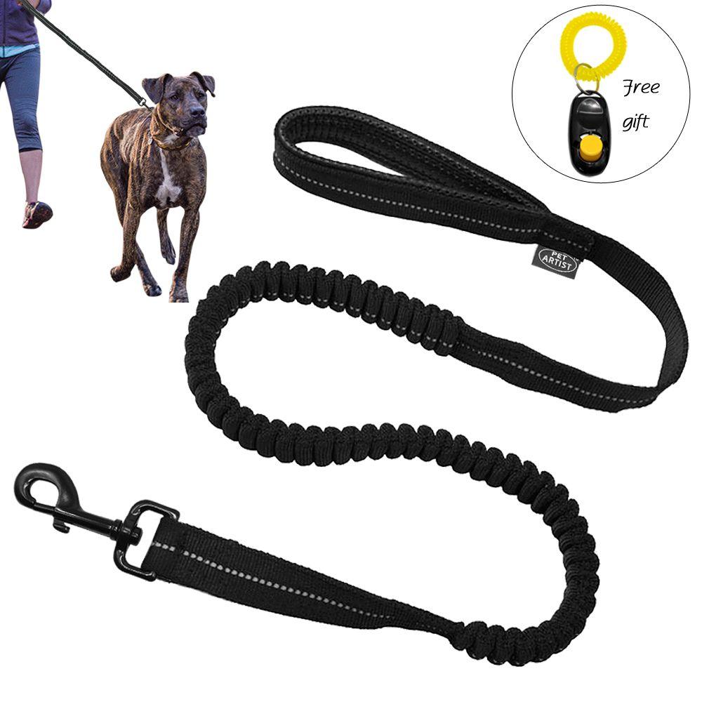 Laisse élastique pour chien avec couture réfléchissante laisse élastique pour chien avec Clicker noir gratuit