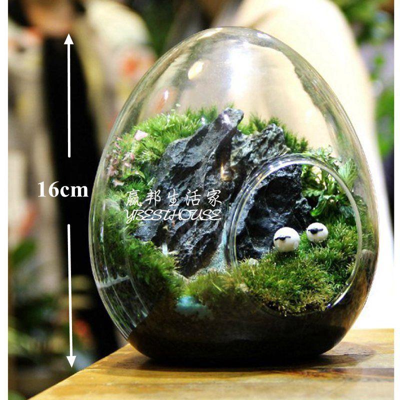 Oeuf Terrarium Mignon Verre Pots Air Plante Pot De Fleur Vases De Table De Mariage Décoration Vase Coup Cylindre Terrarium