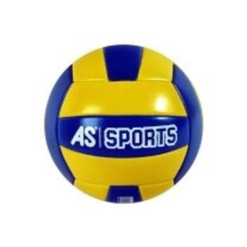 Δερμάτινη Μπάλα Volley Classic