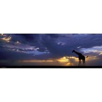Παζλ Ηλιοβασίλεμα Panorama HQ Collection (1000 Κομμάτια)