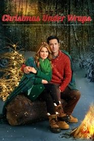 Christmas Under Wraps (2014) Film Online Subtitrat