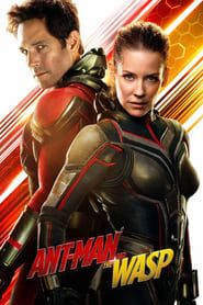 Ant-Man and the Wasp (2018) Film Online Subtitrat