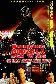 Bringing Godzilla Down to Size (2008)