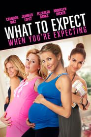 What to Expect When You're Expecting (2012) Film Online Subtitrat