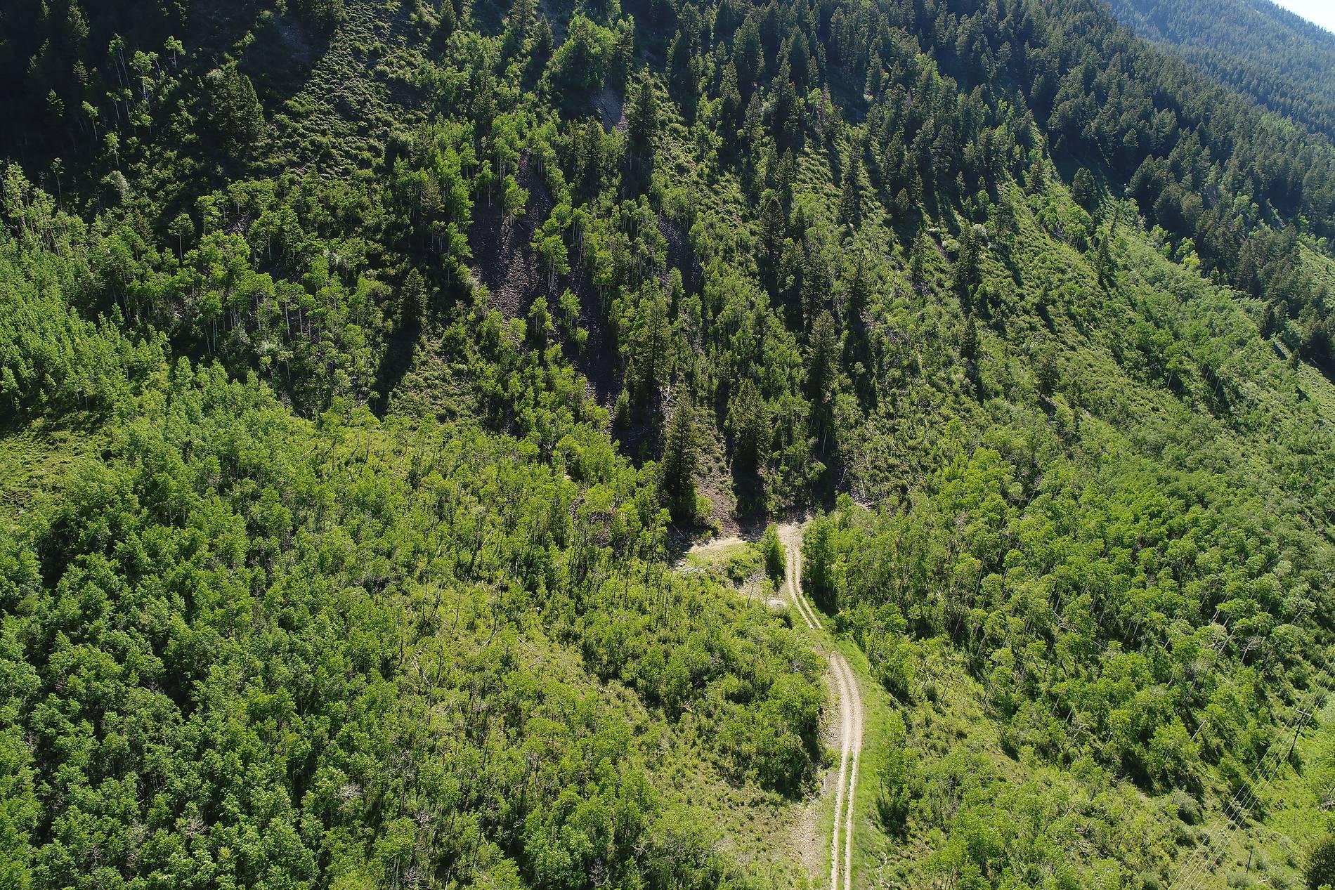 7414 Castle Creek Road Aspen Photo 6