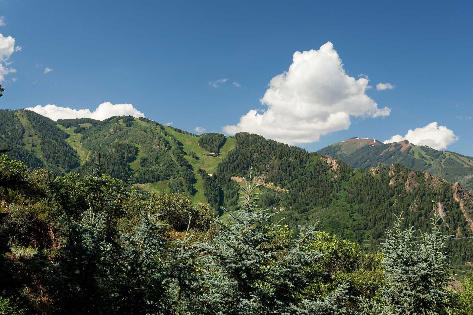 1128 Red Mountain Road Aspen Photo 35
