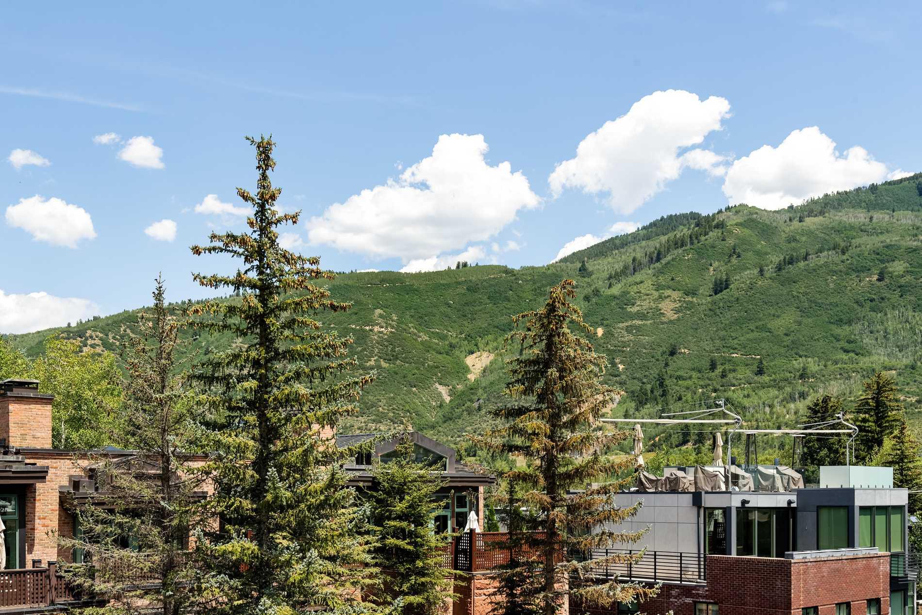 602 E Hyman Avenue Aspen Photo 35