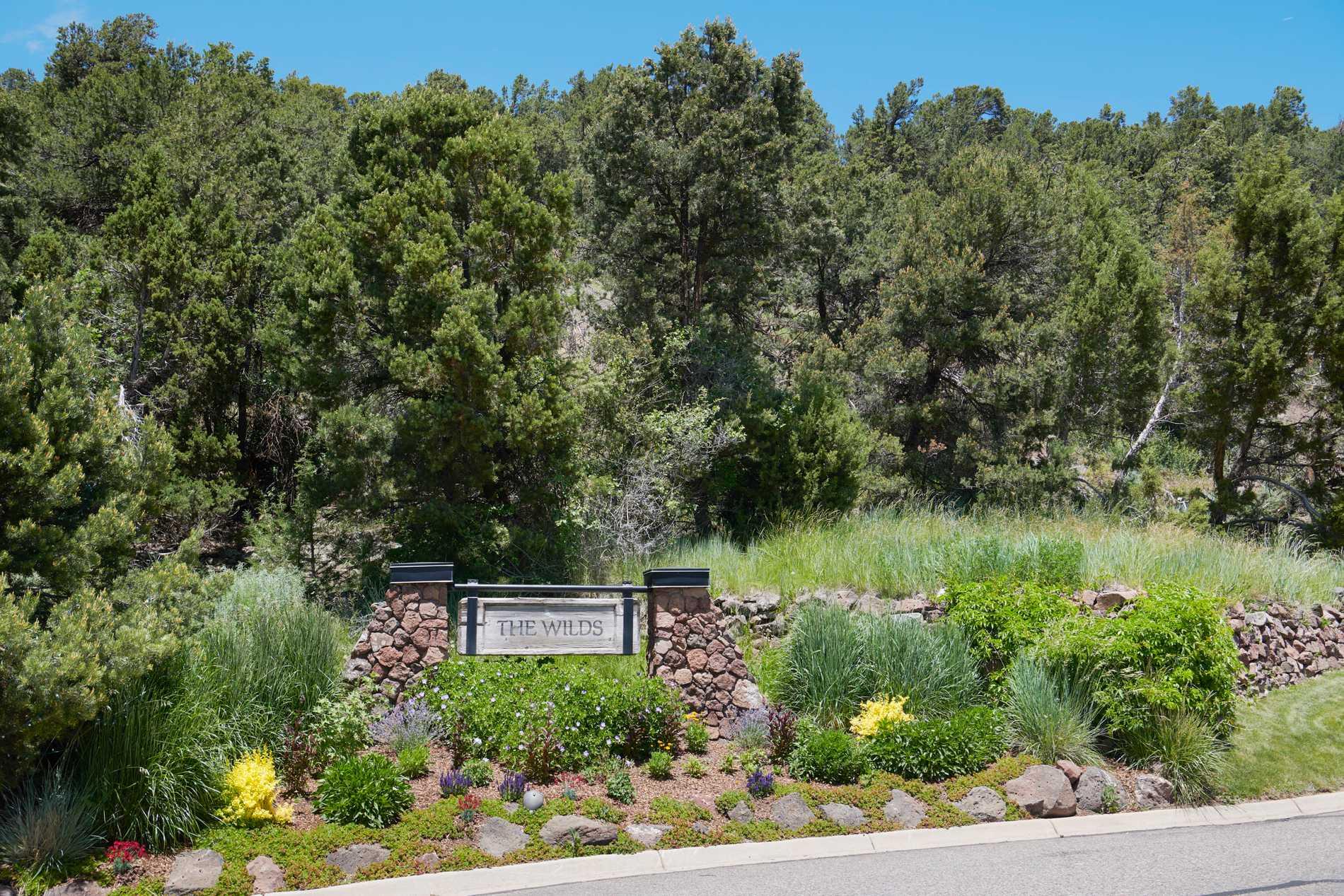 408 Wild Spring Lane Basalt Photo 25