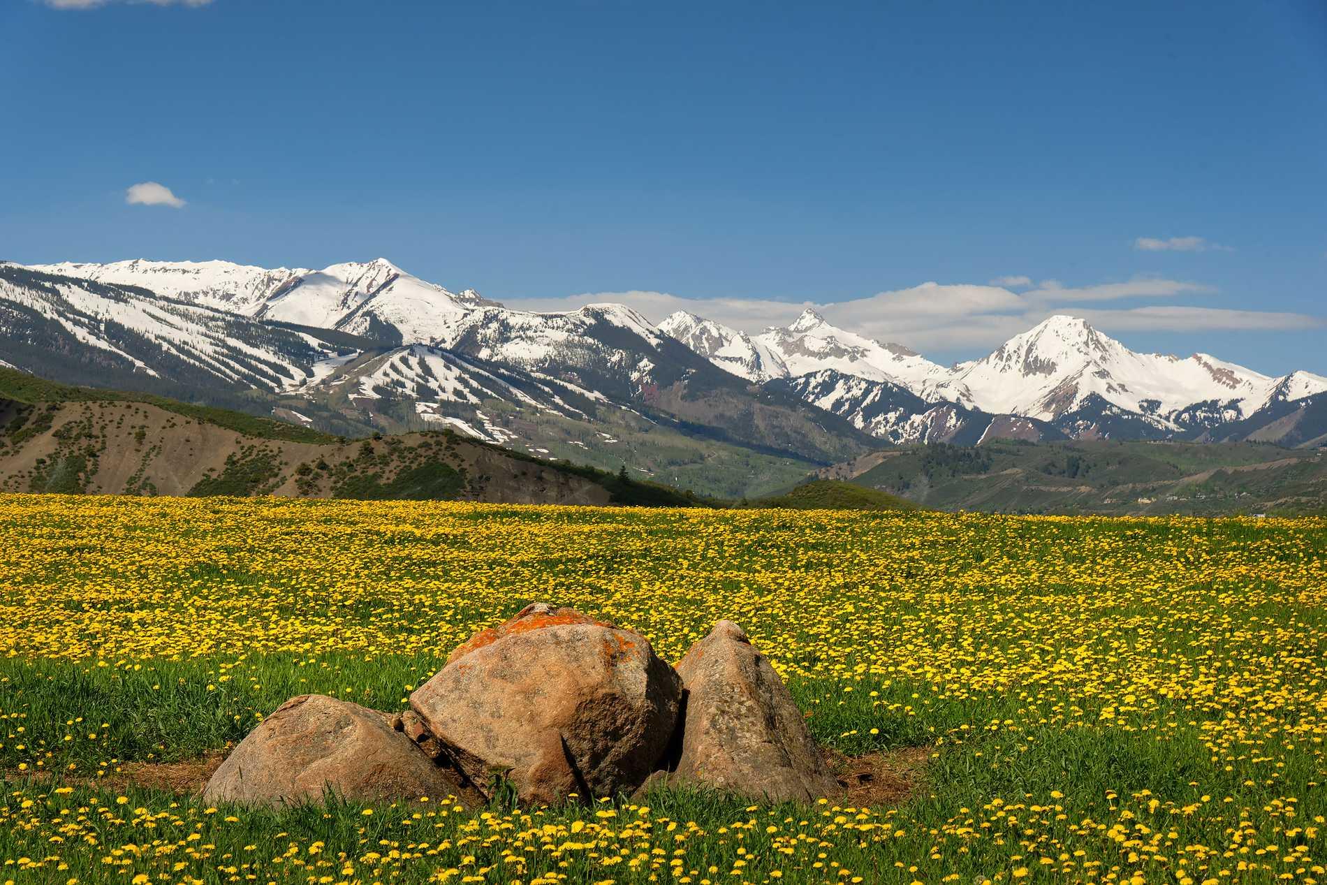 260 Star Mesa Drive Aspen Photo 14