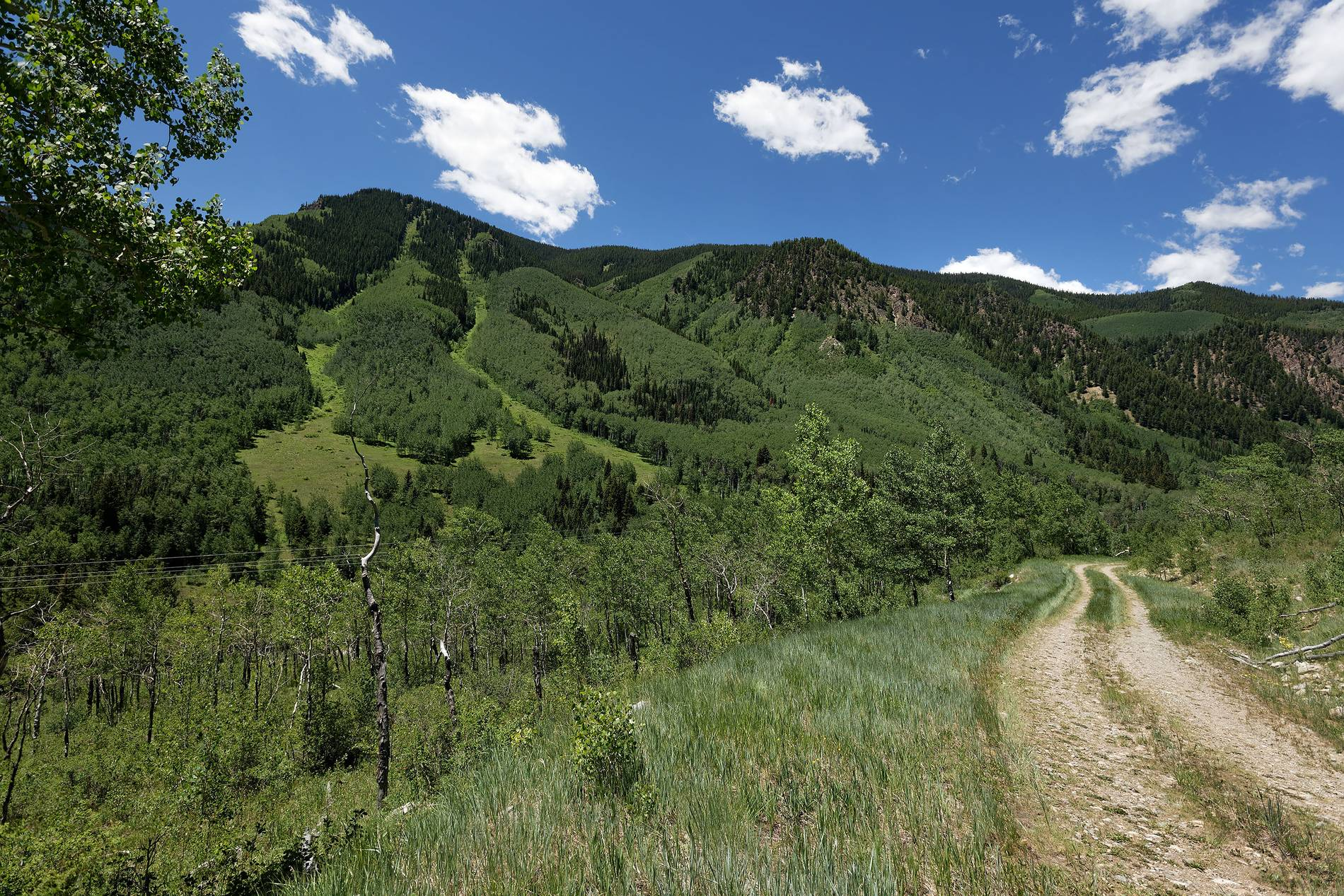 7414 Castle Creek Road Aspen Photo