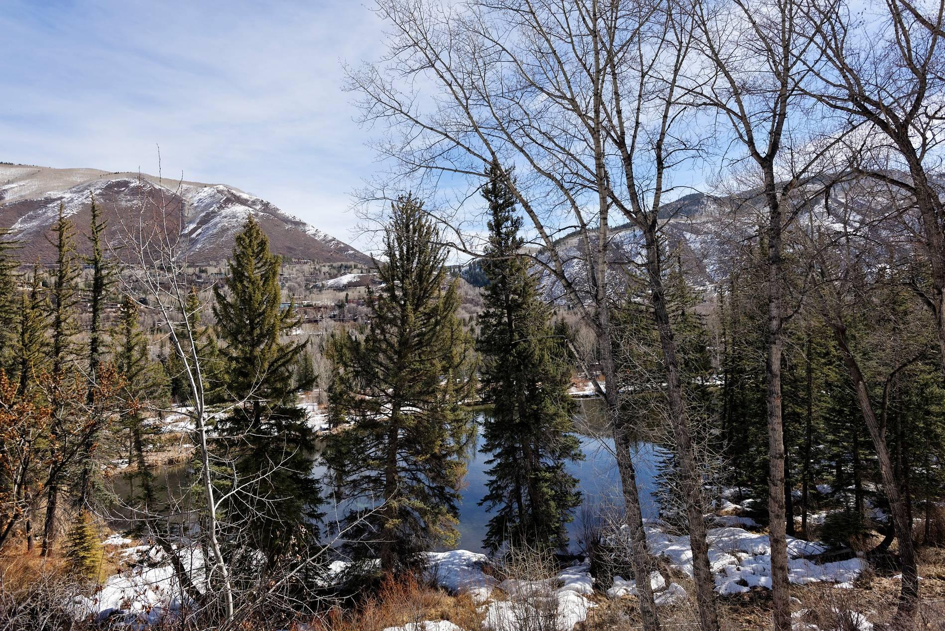 300 Lake Avenue Aspen Photo 14