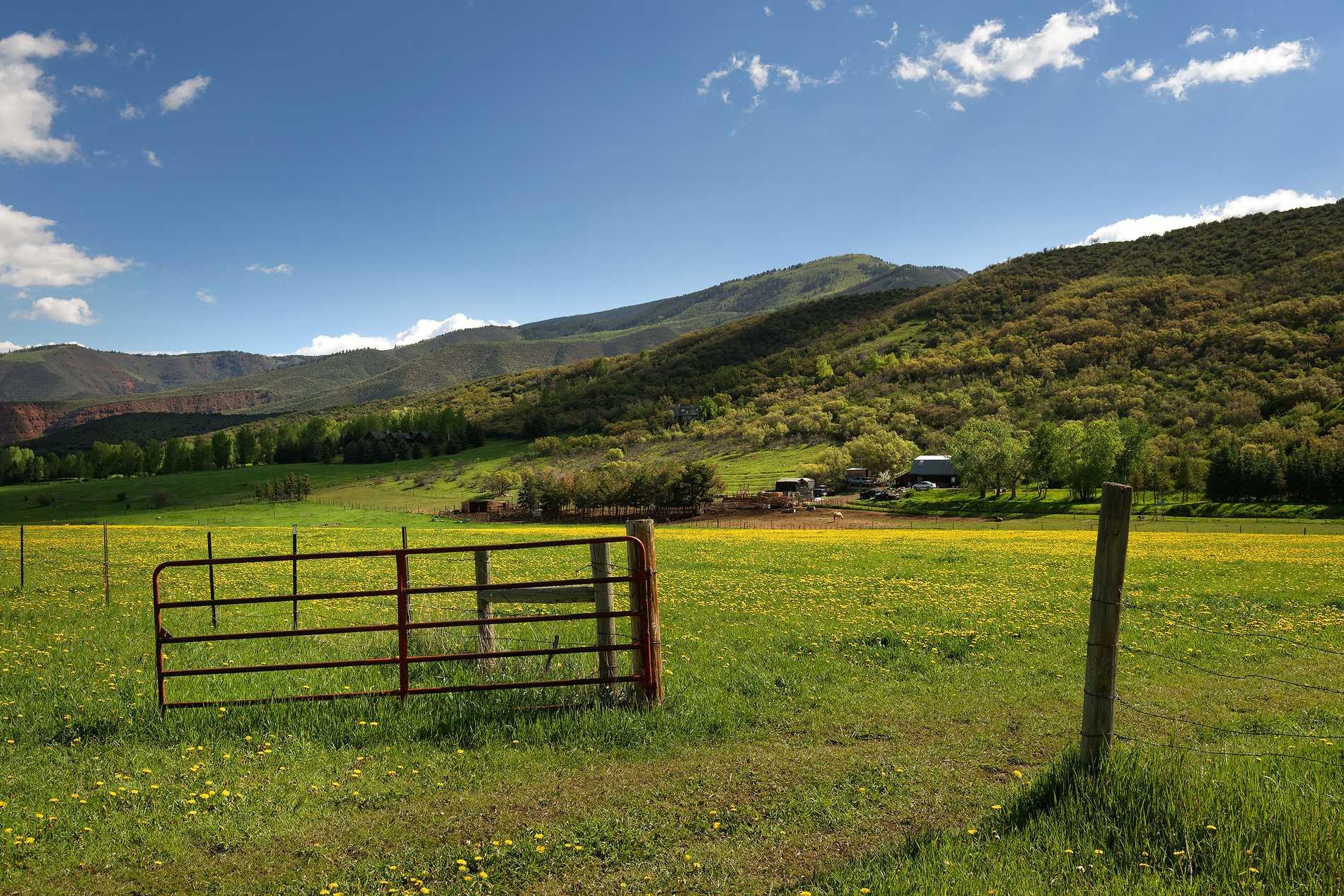 260 Star Mesa Drive Aspen Photo 19