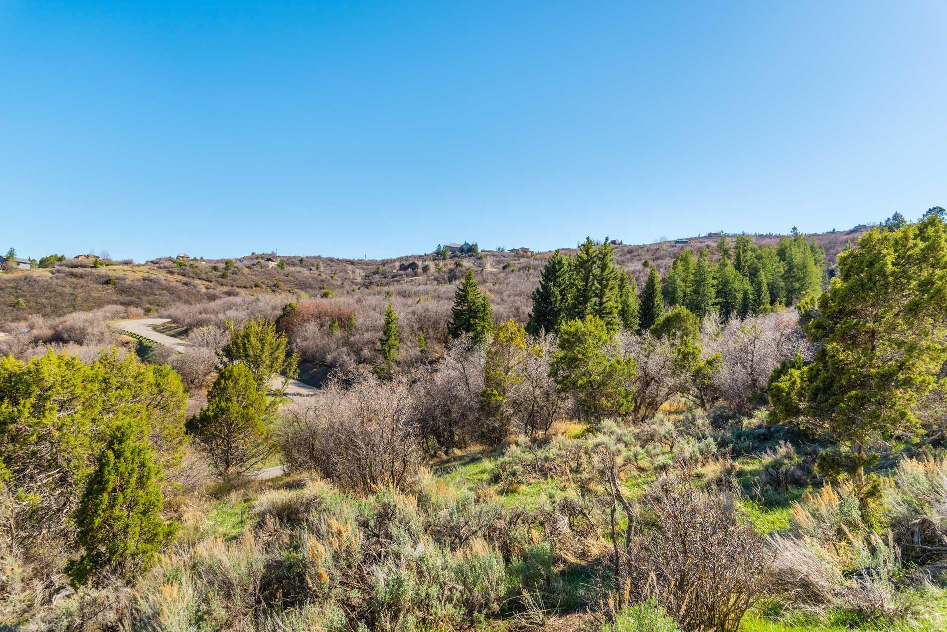 Cougar Canyon, 00 Juniper Hill Drive Aspen Photo 11