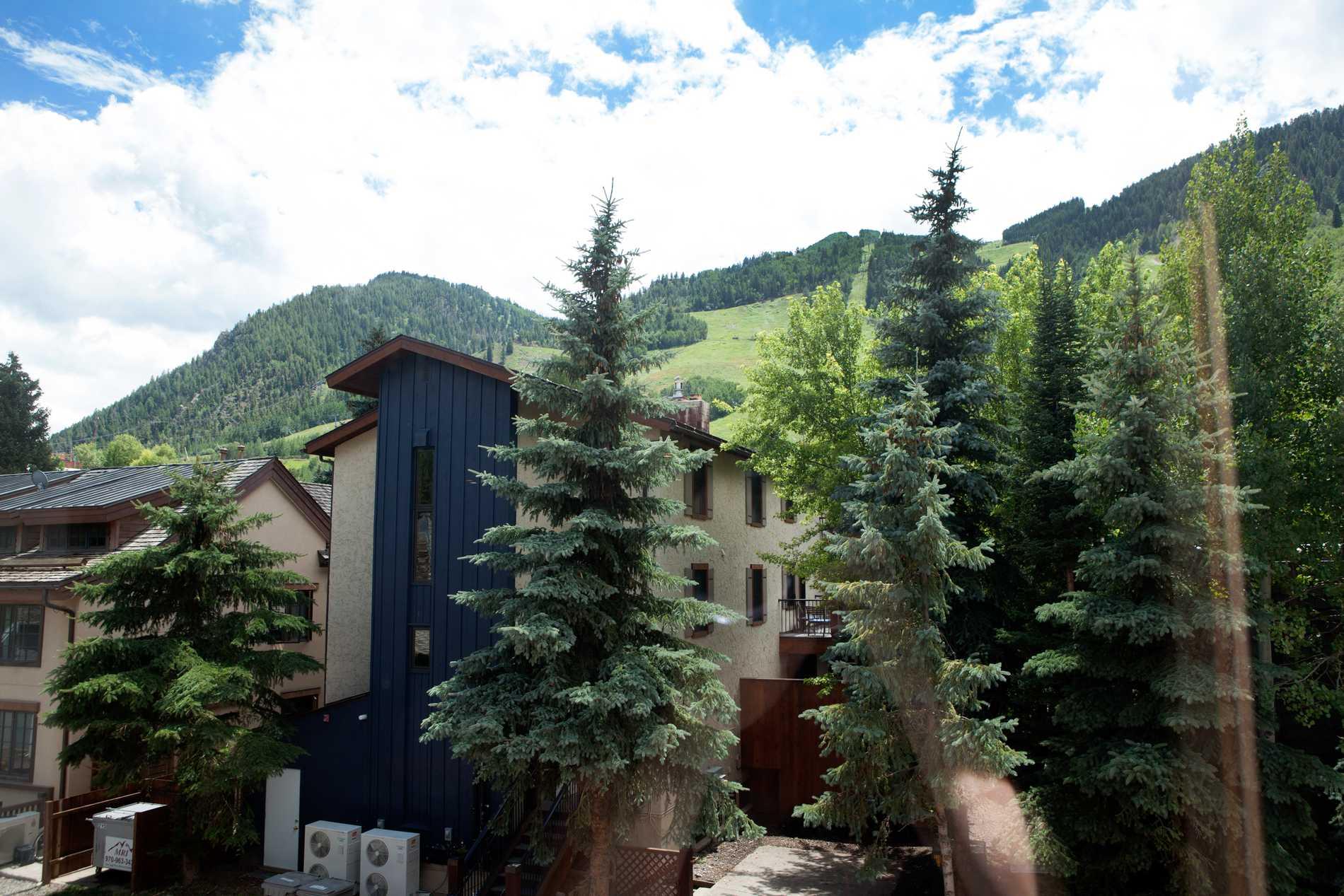 119 E Cooper Avenue, Unit 17 Aspen Photo 10