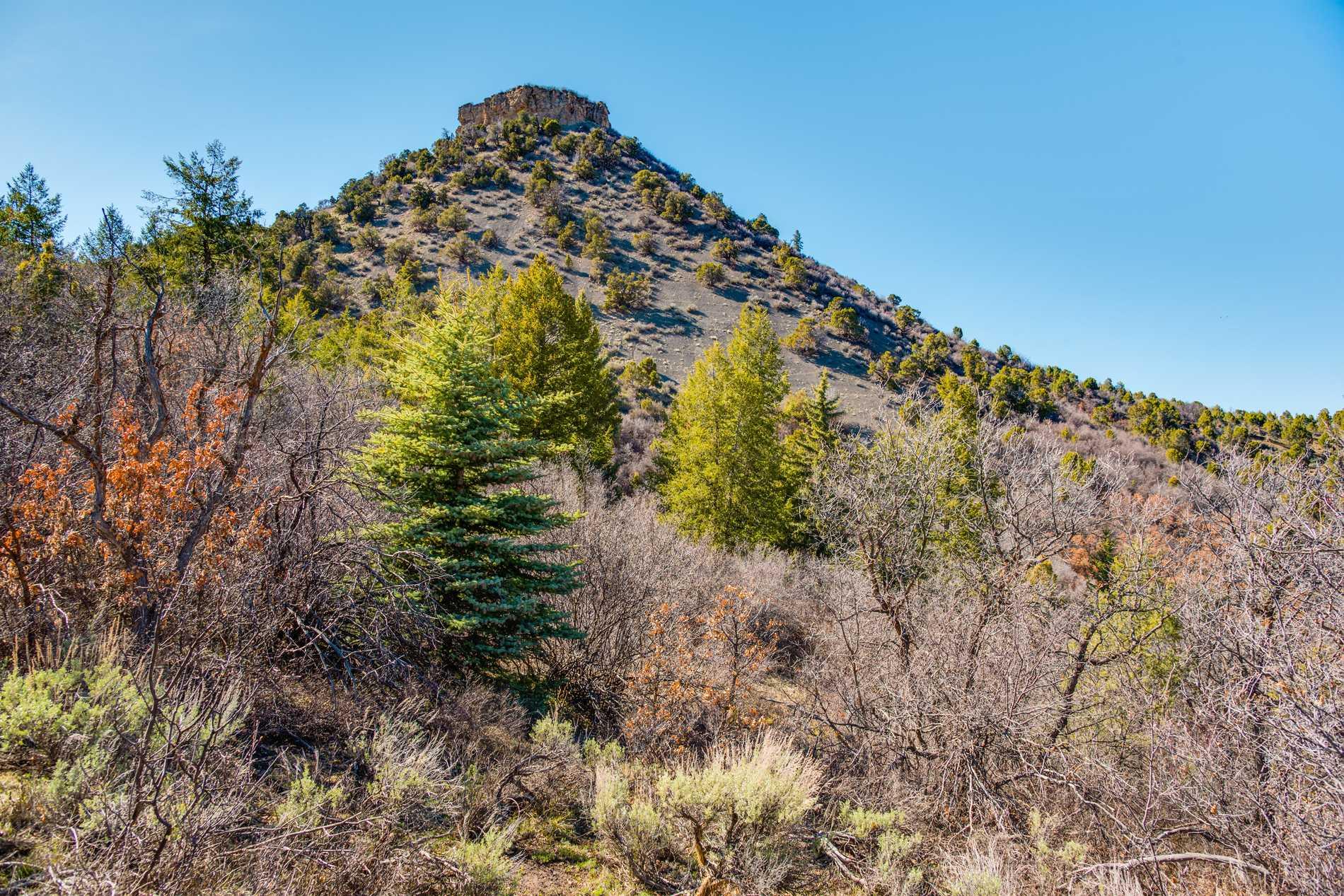 Cougar Canyon, 00 Juniper Hill Drive Aspen Photo 10