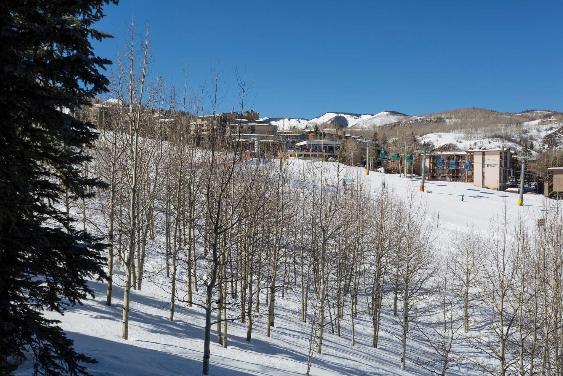 425 Wood Road #37 Snowmass Village Photo 29