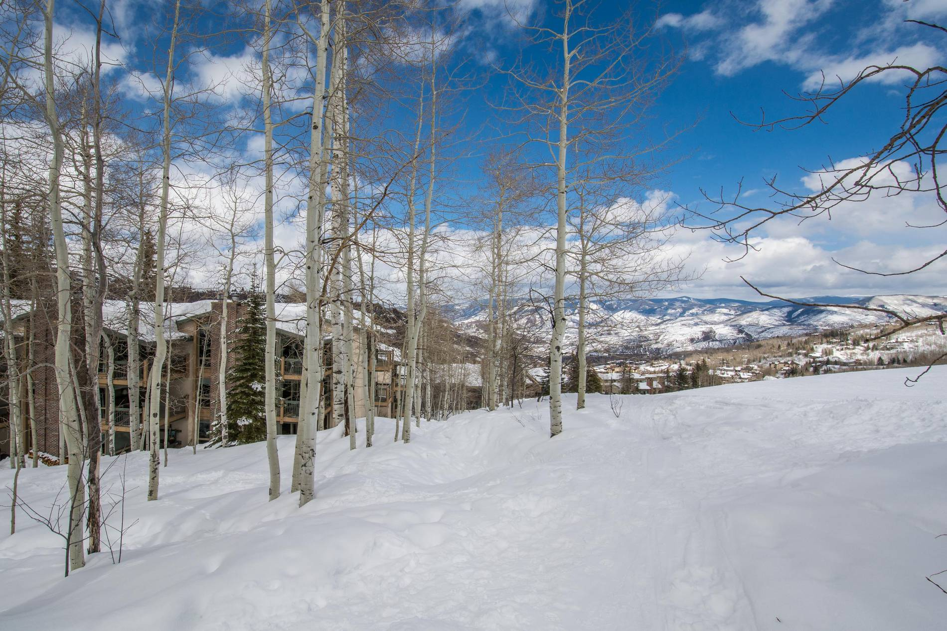 855 Carriage Way, Leaf 702 Snowmass Village Photo 14