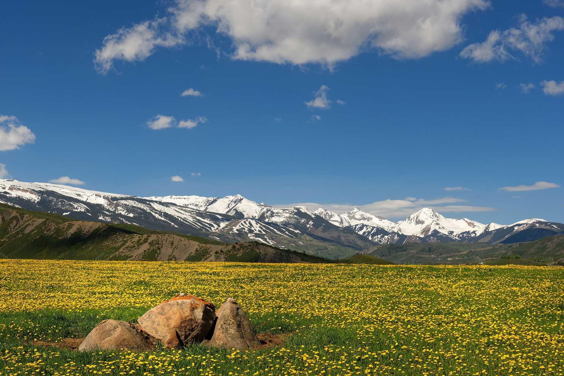 260 Star Mesa Drive Aspen Photo 13