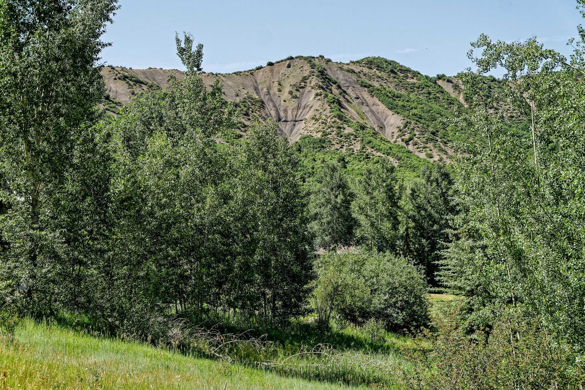 TBD Spur Ridge Road Snowmass Village Photo 22