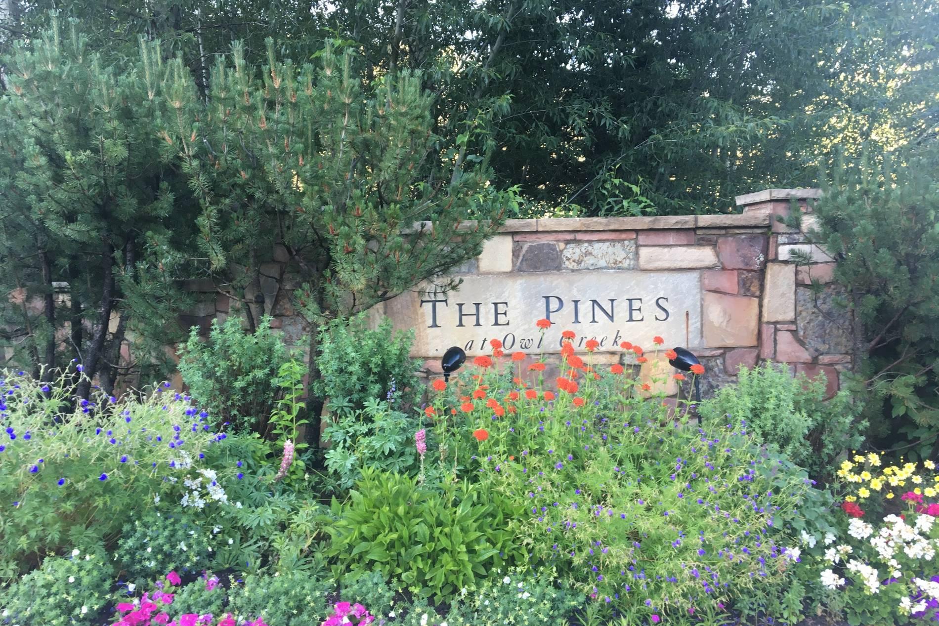 460 Pine Crest Drive Snowmass Village Photo