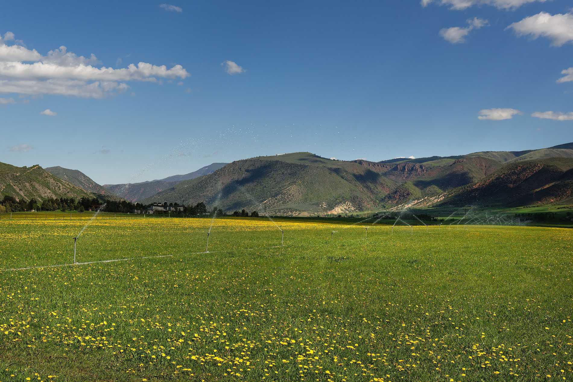 260 Star Mesa Drive Aspen Photo 18