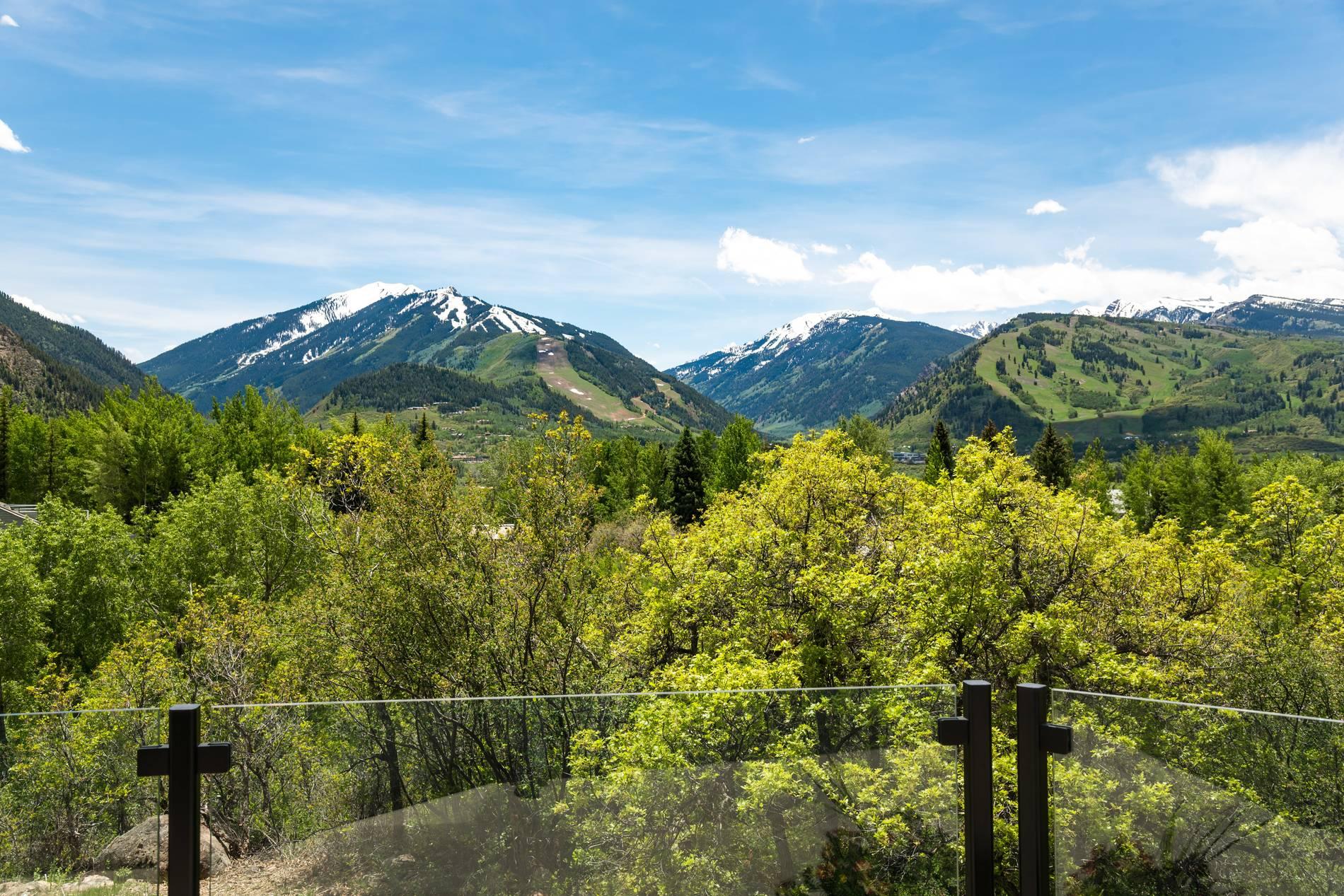 346 Draw Drive Aspen Photo 40