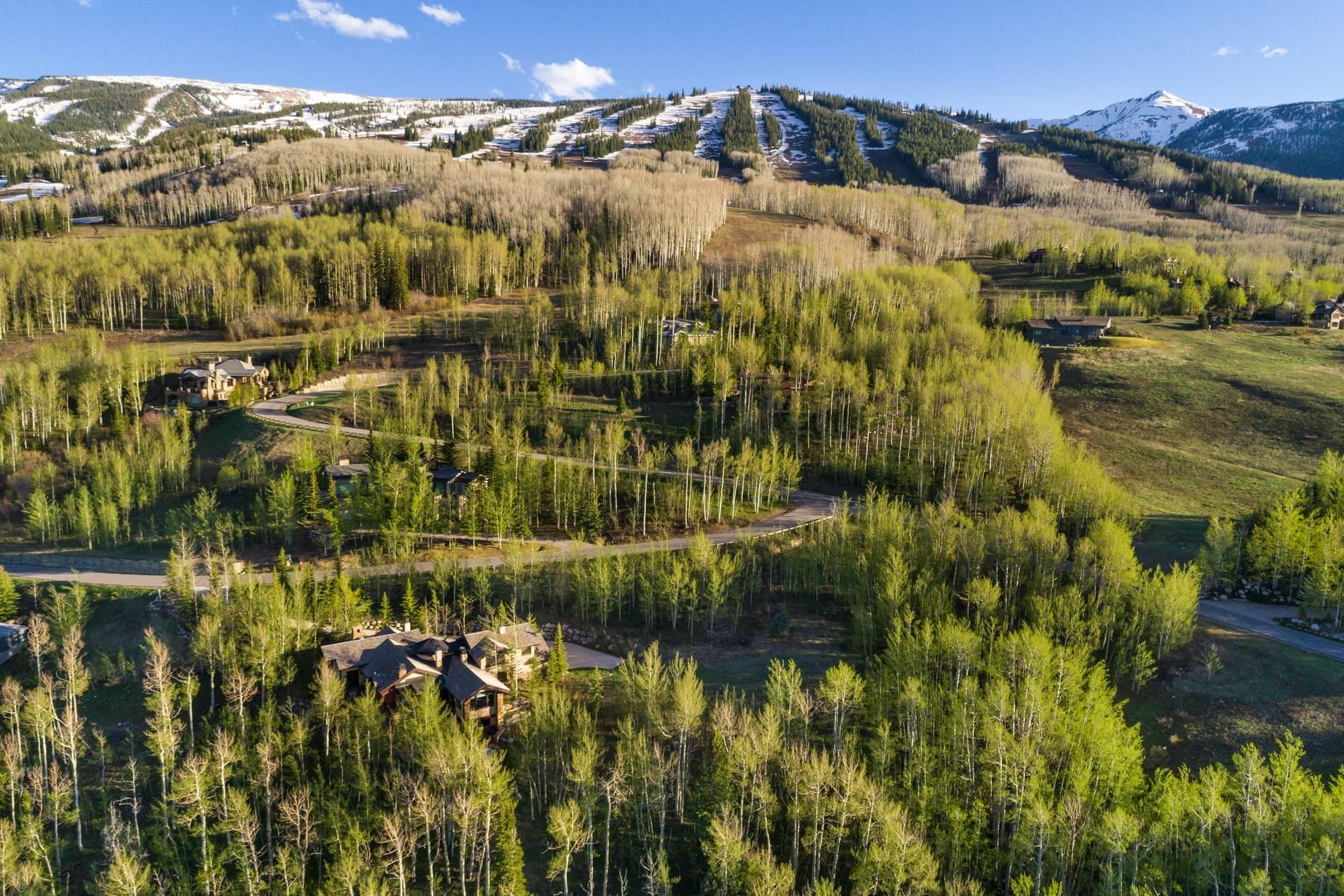 56 Aspen Way Snowmass Village Photo 36