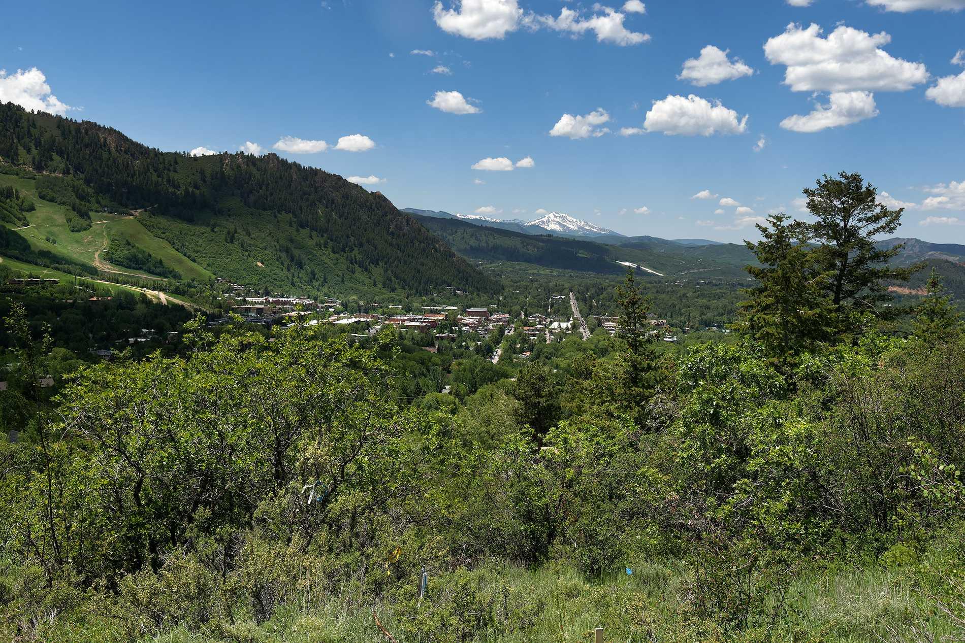 807 McSkimming Road Aspen Photo 7