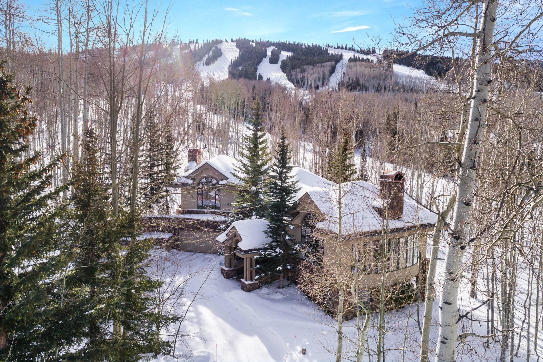 776 Divide Drive Snowmass Village Photo 7