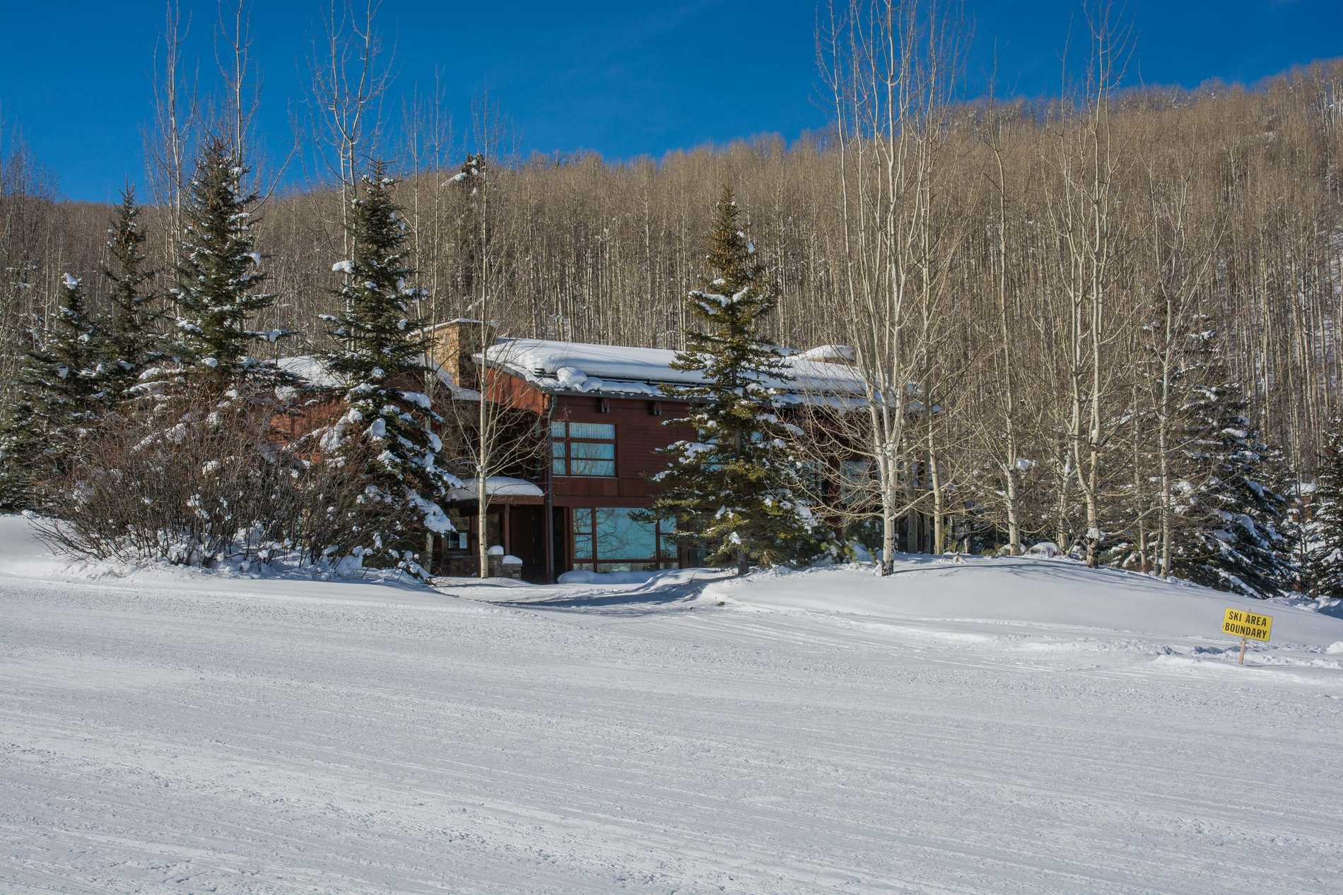 204 Blue Spruce Lane Snowmass Village Photo 42