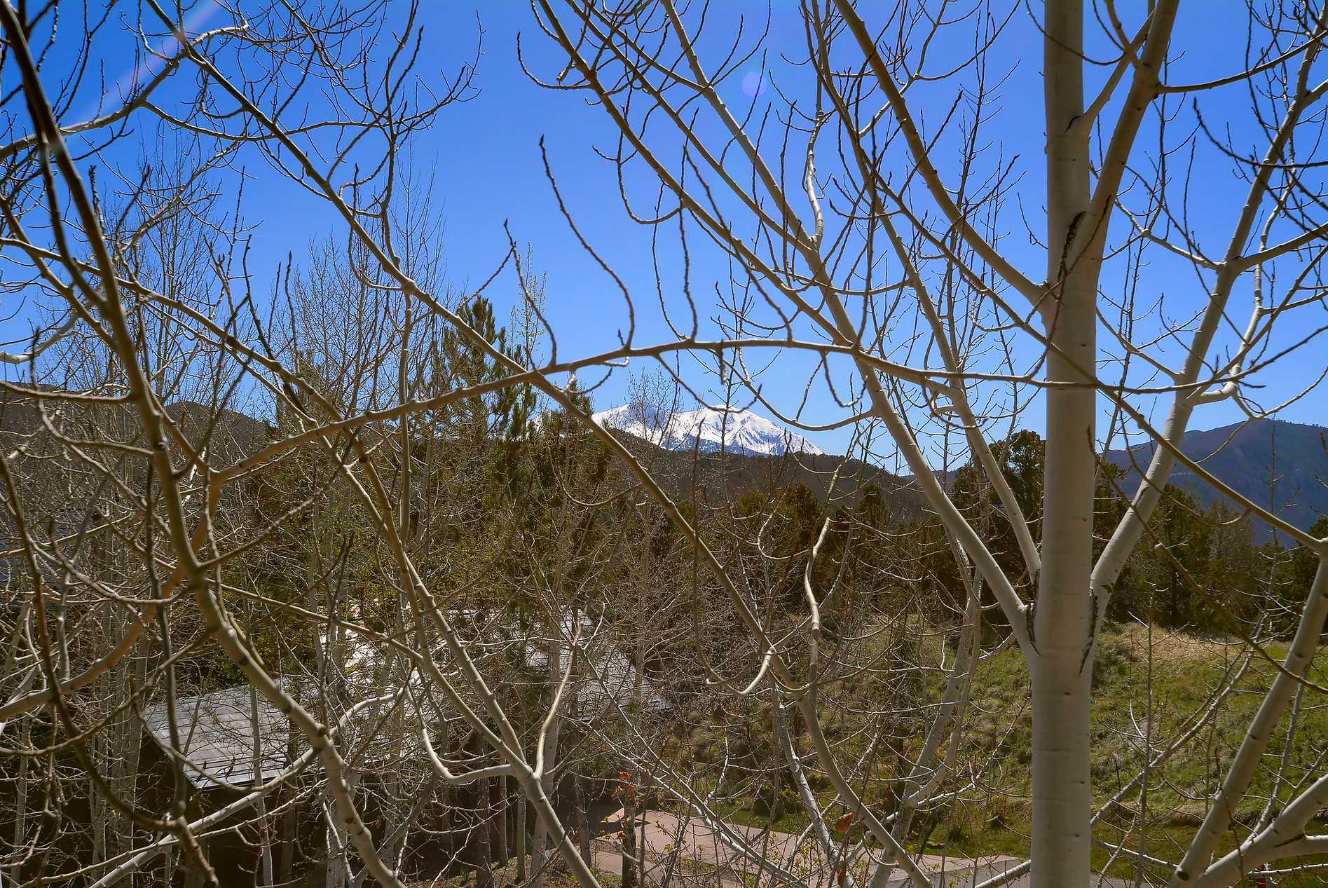 207 Wild Spring Lane Basalt Photo 21