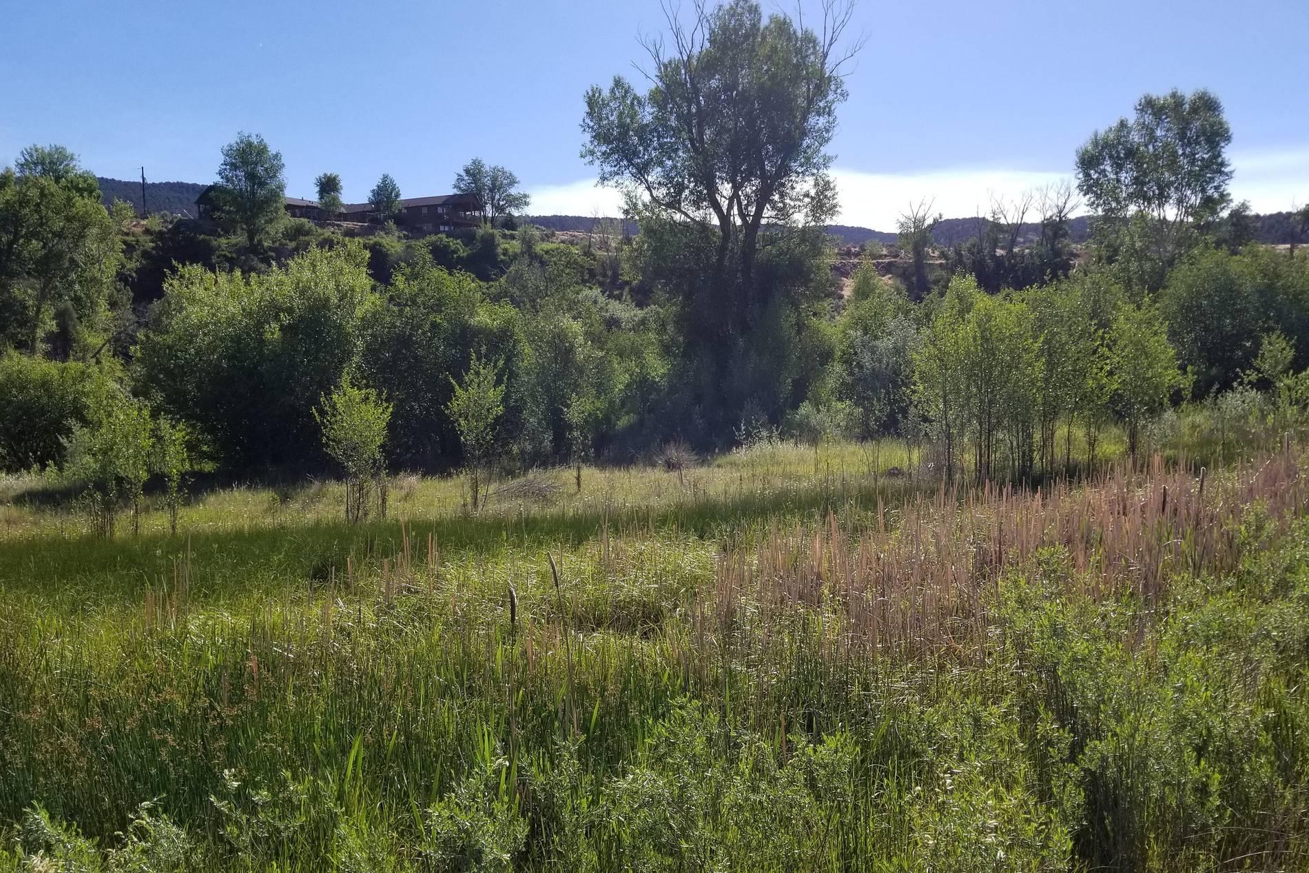 272 River Bank Lane Glenwood Springs Photo 11