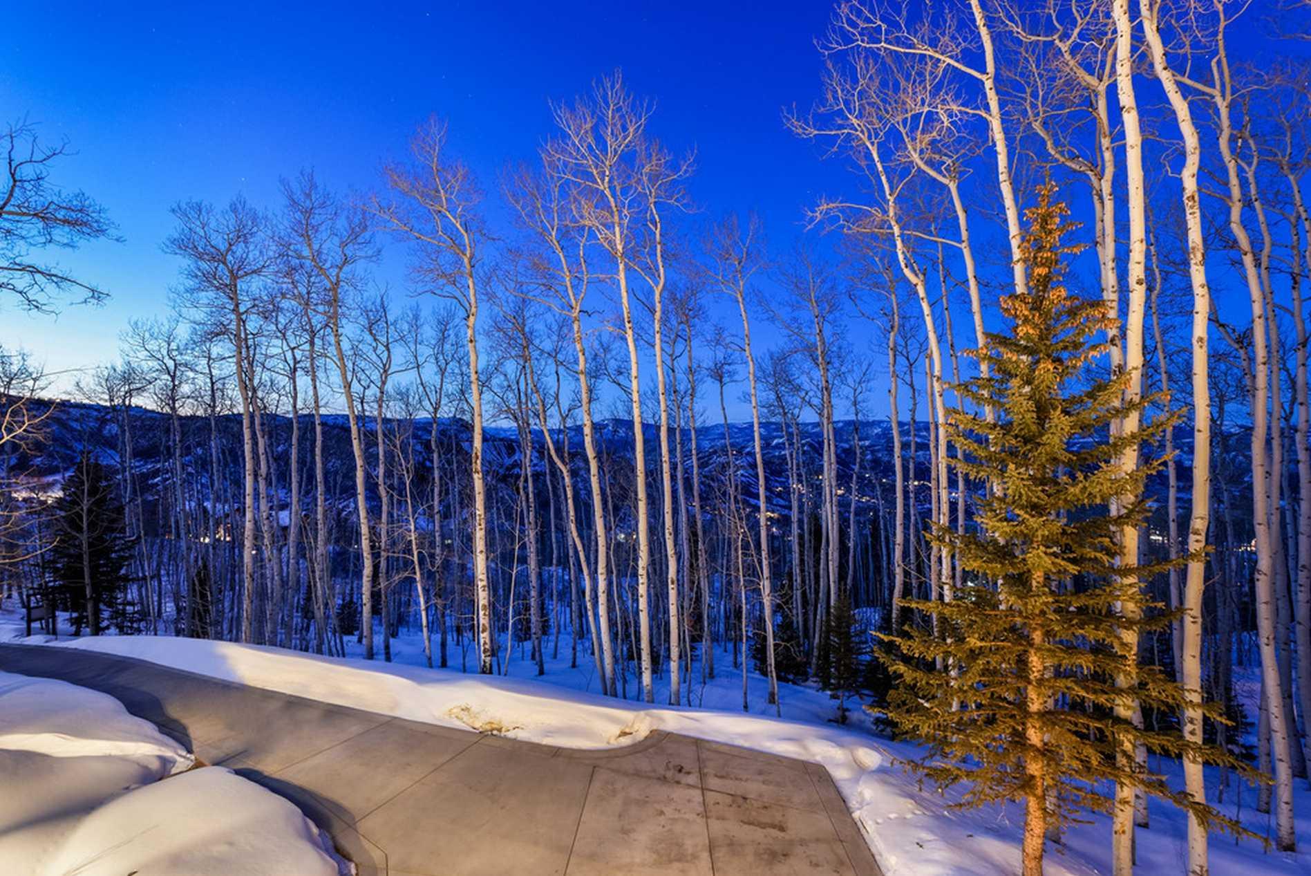150 Baby Doe Lane Snowmass Village Photo 41