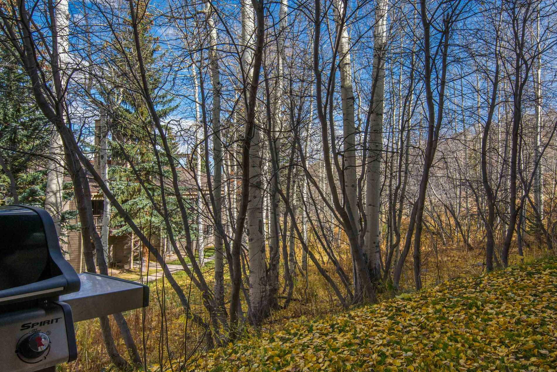 855 Carriage Way, Leaf Unit: 101  Snowmass Village Photo 12