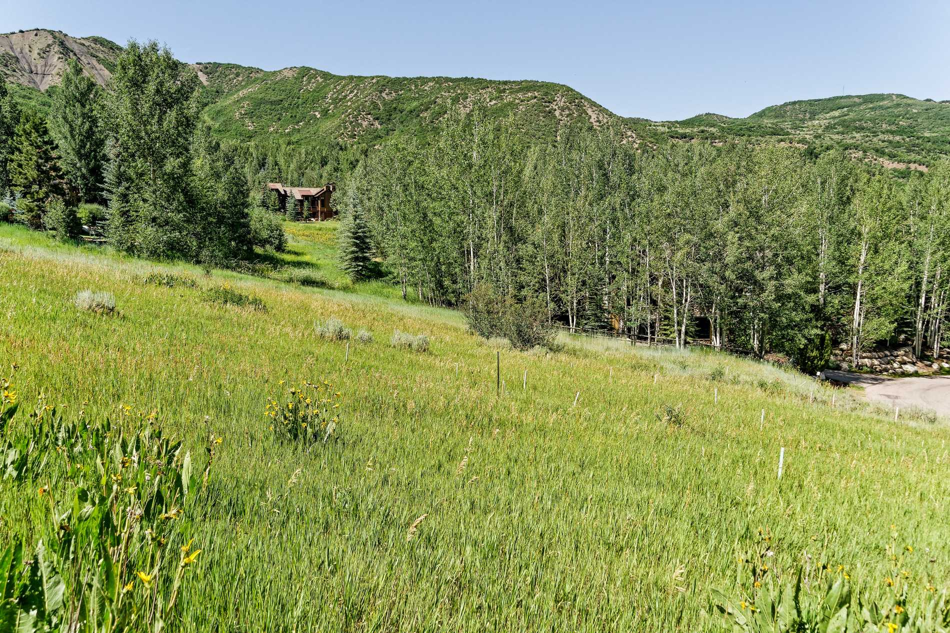 TBD Spur Ridge Road Snowmass Village Photo 16