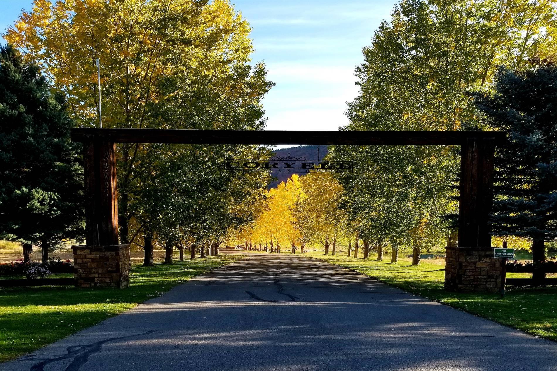 0436 Coryell Ranch Road Carbondale Photo 2
