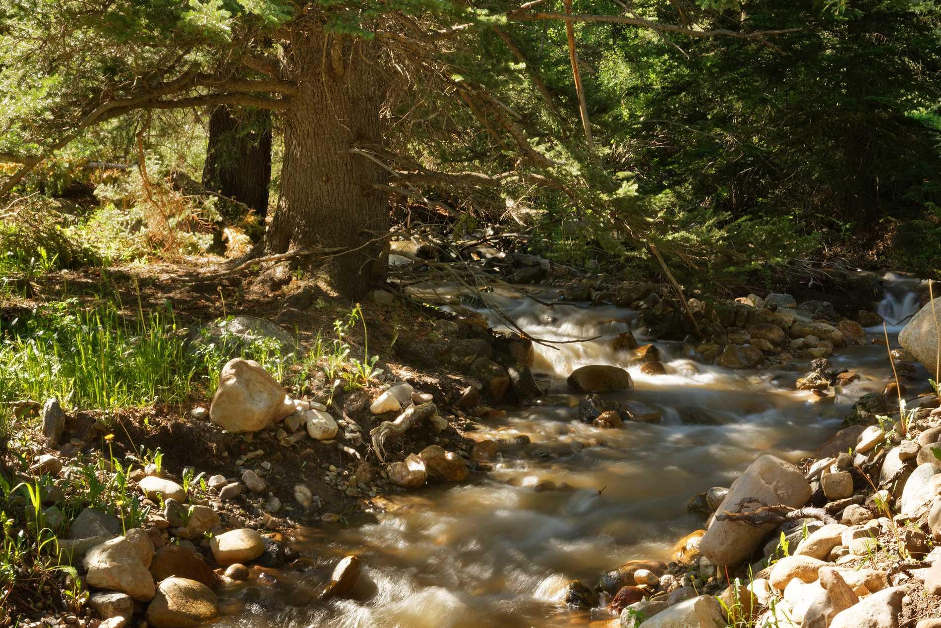 TBD Miller Creek Road Meredith Photo 35