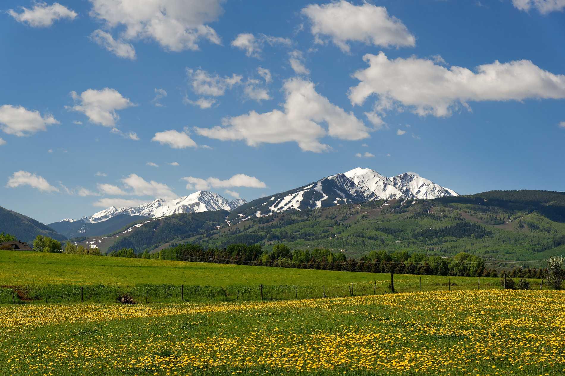 260 Star Mesa Drive Aspen Photo 12
