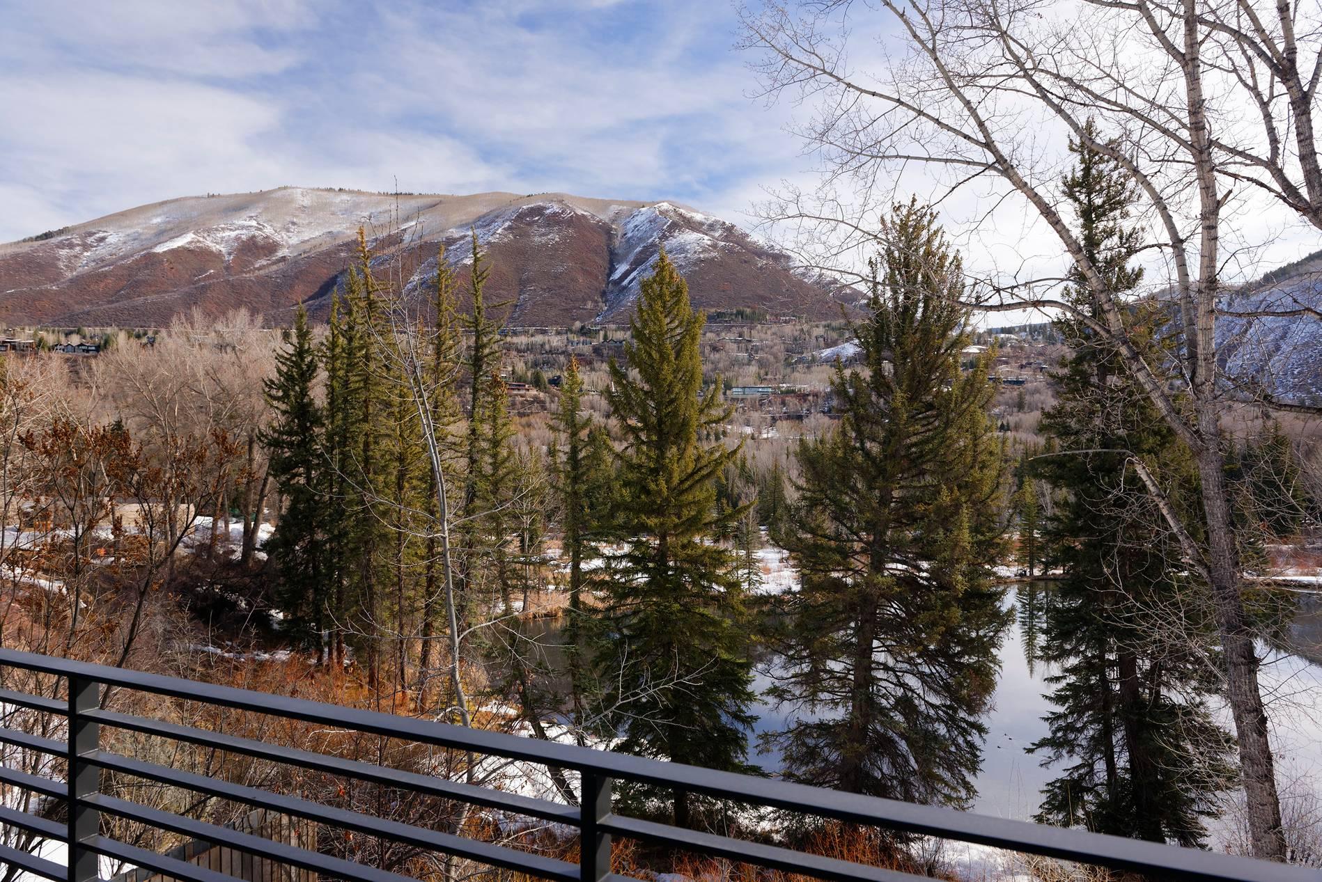 300 Lake Avenue Aspen Photo 22